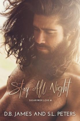 Stay All Night ebook